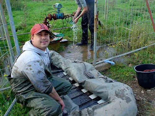 Marcello Petrone Teichservice Teichberatung Teichreinigung