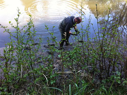 Teichreinigung Mape Teichreinigung